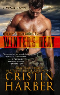 BookBub Blog on Romantic Suspense – Winters Heat