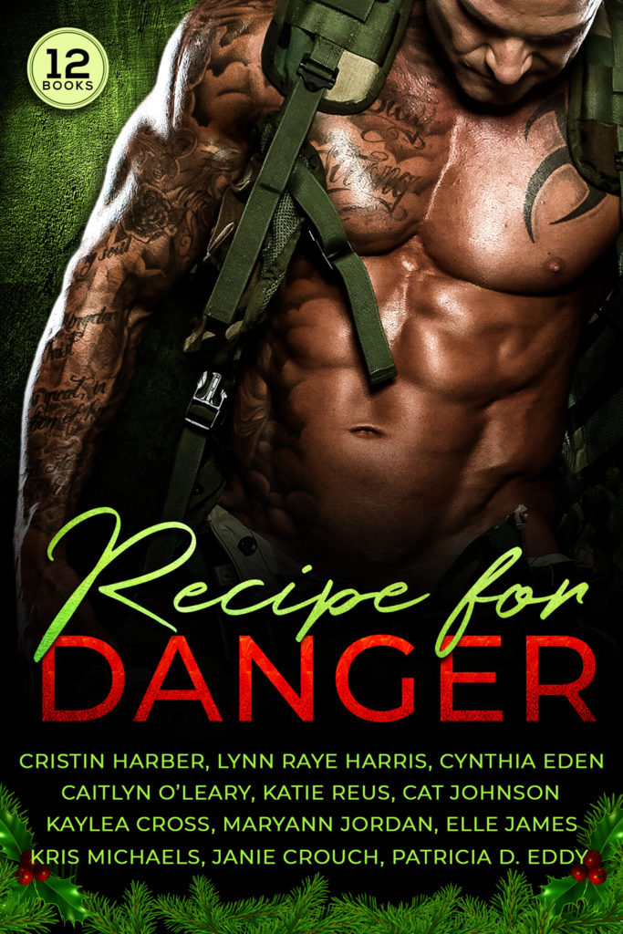 Recipe for Danger Romance Novel